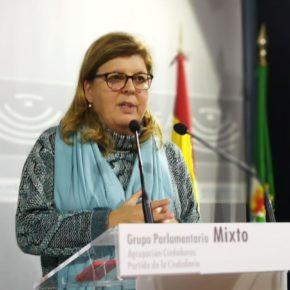 """Victoria Domínguez: """"Ciudadanos ha logrado que se incluya en los presupuestos el 'cheque innovación' para las pymes"""""""