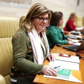 """Victoria Domínguez pide a la Junta """"un esfuerzo de gestión"""" para que ejecute presupuesto e impulse y fomente el empleo"""