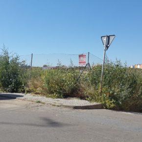 Ciudadanos Almendralejo insta al Ayuntamiento a que impulse un plan de desbroce de las parcelas privadas y municipales