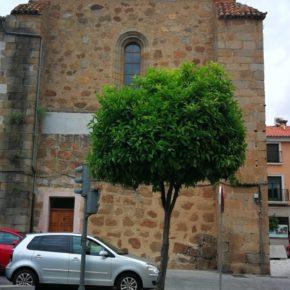 Cs Plasencia critica que el Consistorio proponga el alquiler del ábside del siglo XVI para ubicar una hamburguesería