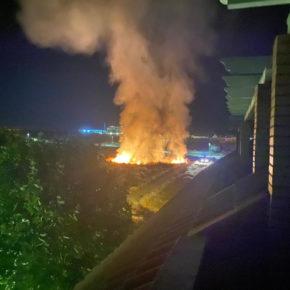 Cs Mérida insta al equipo de gobierno municipal a que comience con el desbroce para evitar incendios